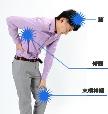 ニューロモデュレーション療法のカバーする領域